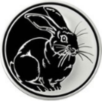 Реверс монеты «Кролик»